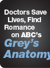 Doctors Save Lives, Find Romance on ABC's Grey's Anatomy