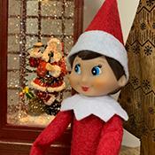 Meet Dot the Elf